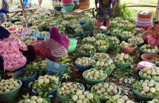 Festival Srikaya, Upaya Promosi Potensi Daerah Sumenep ke Pentas Nasional