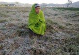 Kondisi Suhu di Sumenep Cenderung Dingin, Masyarakat Diimbau Antisipasi Penyakit ini