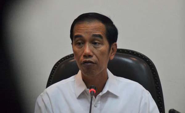 Jokowi Panggil Darmin Dan Siti Nurbaya, Ada Apa?
