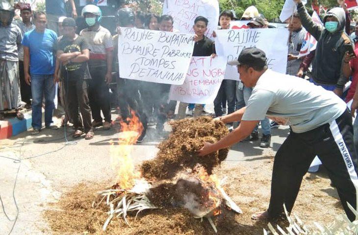 Harga Tembakau Tak Sesuai BEP, Sejumlah Massa Demo Bupati Pamekasan