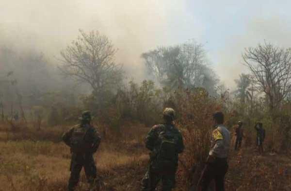 28 Hektare Lahan Terbakar, Gara-gara Puntung Rokok