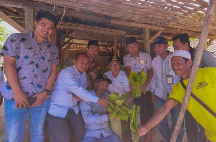 Demo Tembakau Jilid II, Orator Sebut Bupati Baddrut Tamam Si Raja Selfie