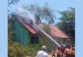 Lahan Gambut dan Pohon Bambu Dilalap Api, SMPN 2 Sampang Nyaris Terbakar
