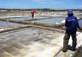 Harga Tetap Anjlok, DPRD Pamekasan Usulkan Perda Garam