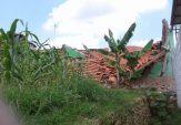 Dua Ruang Kelas di SDN 2 Samaran Sampang Ambruk, Sebagian Material Bangunan dari Kayu Bekas