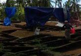 Pemkab Diminta Bersikap Soal Nasib Petani Pasca Diguyur Hujan